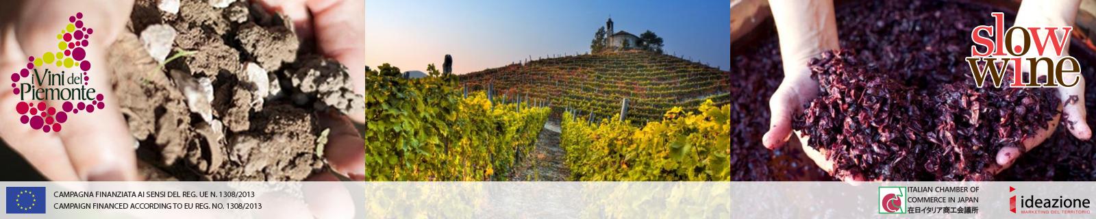 ワインの国イタリア ー 醸造家たちの手仕事